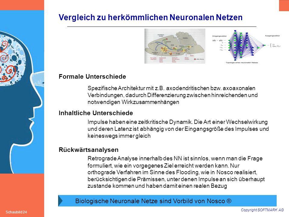 Copyright SOFTMARK AG Schaubild 24 Vergleich zu herkömmlichen Neuronalen Netzen Biologische Neuronale Netze sind Vorbild von Nosco ® Formale Unterschi