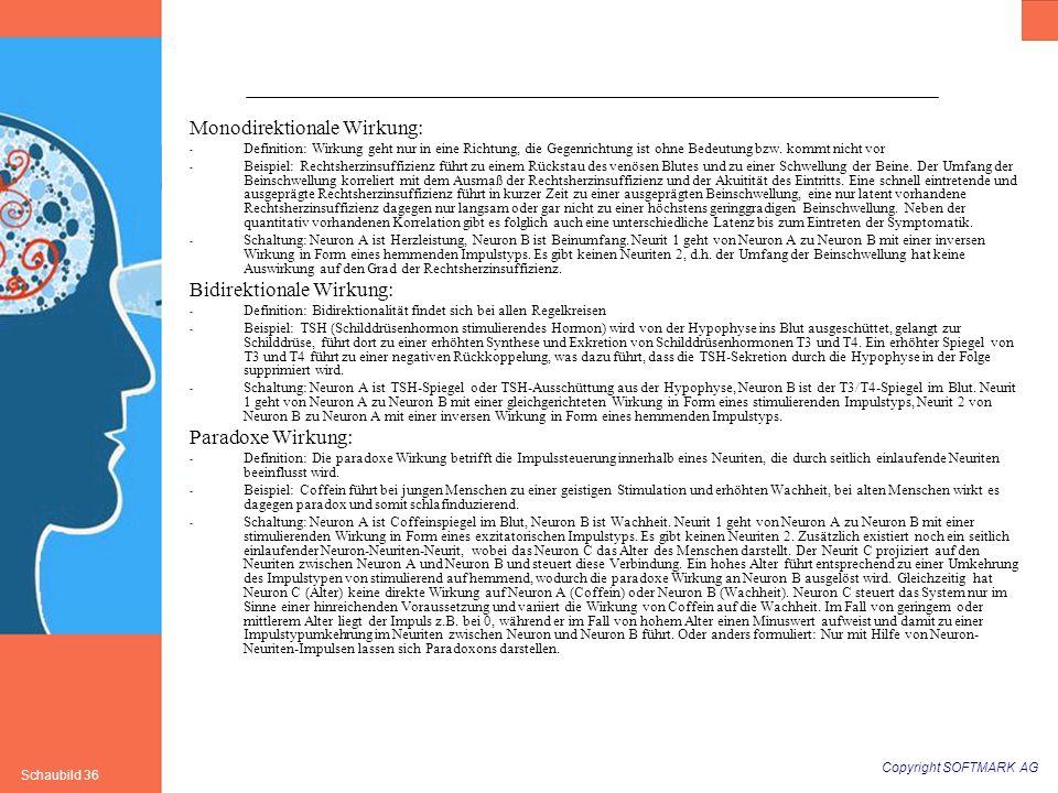 Copyright SOFTMARK AG Schaubild 36 Monodirektionale Wirkung: - Definition: Wirkung geht nur in eine Richtung, die Gegenrichtung ist ohne Bedeutung bzw
