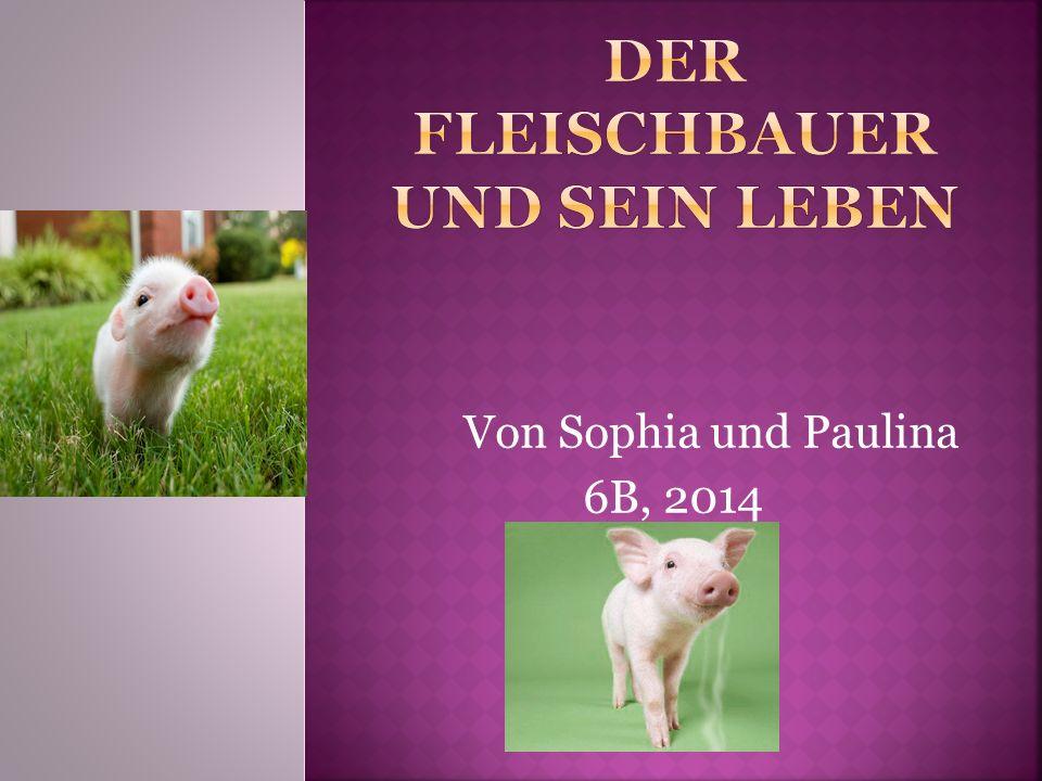 Von Sophia und Paulina 6B, 2014