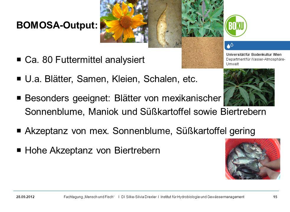 Universität für Bodenkultur Wien Department für Wasser-Atmosphäre- Umwelt Fachtagung Mensch und Fisch I DI Silke-Silvia Drexler I Institut für Hydrobi