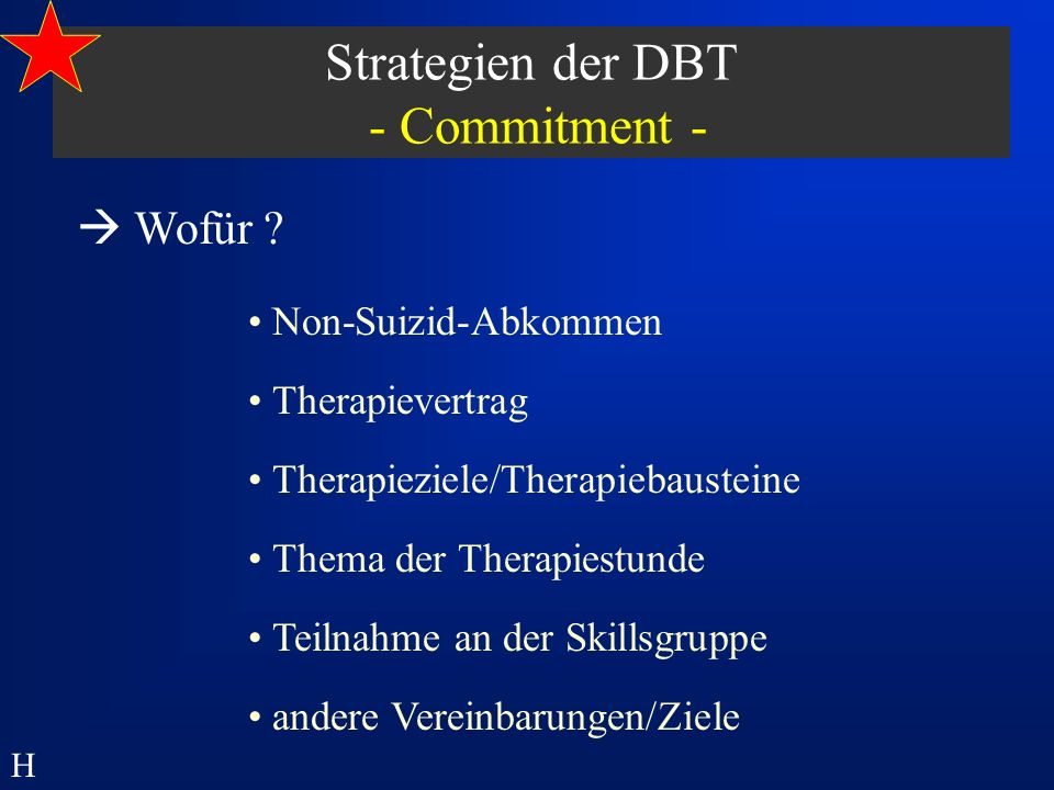 Wofür ? Non-Suizid-Abkommen Teilnahme an der Skillsgruppe Thema der Therapiestunde Therapieziele/Therapiebausteine Therapievertrag andere Vereinbarung