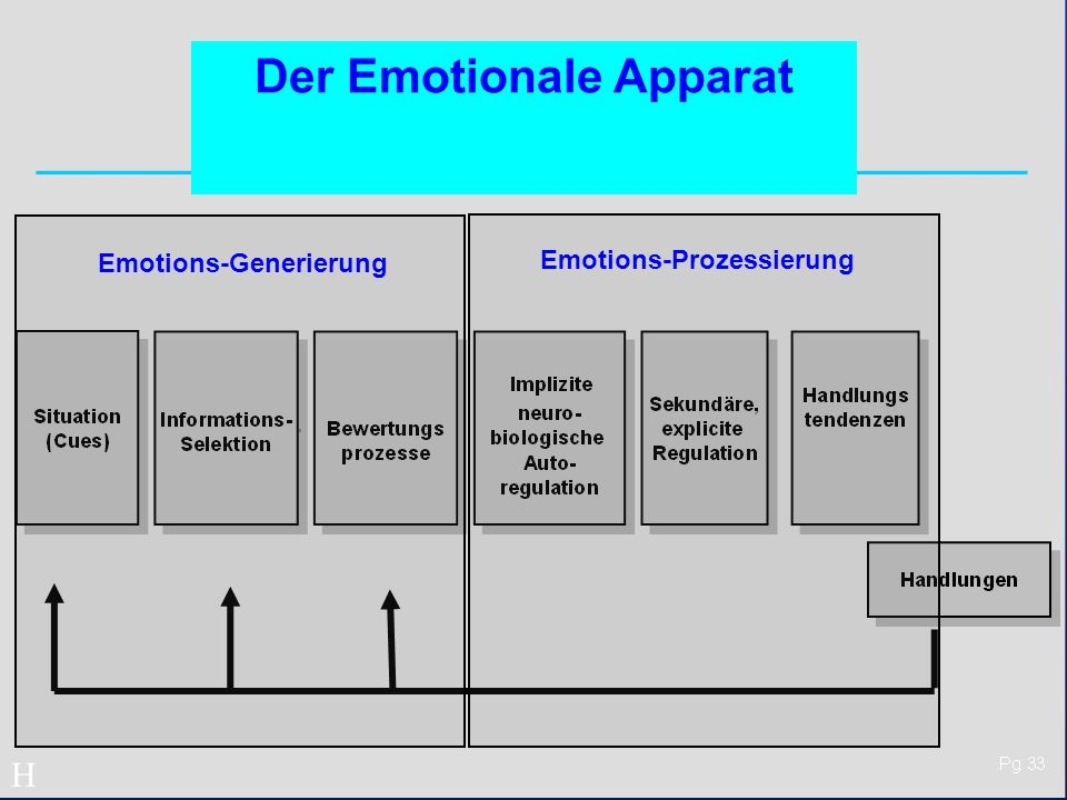 Der Emotionale Apparat Emotions-Generierung Emotions-Prozessierung H