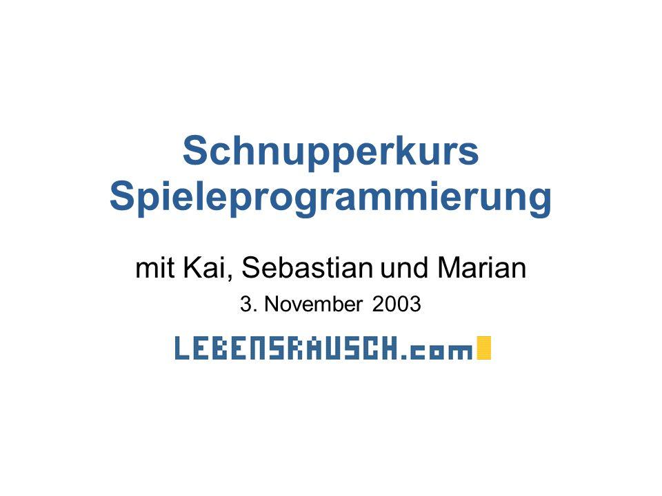Schnupperkurs Spieleprogrammierung mit Kai, Sebastian und Marian 3. November 2003