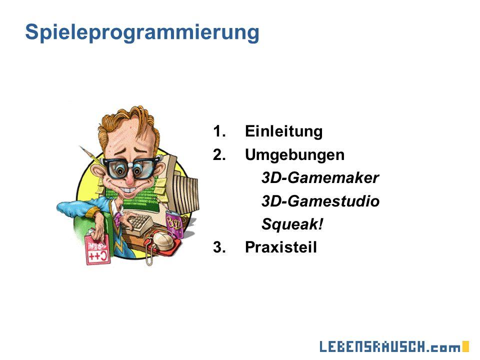 Spieleprogrammierung 1.Einleitung 2.Umgebungen 3D-Gamemaker 3D-Gamestudio Squeak! 3.Praxisteil