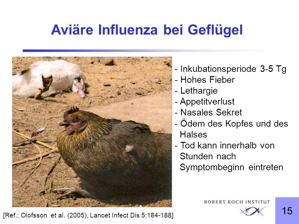 15 Aviäre Influenza bei Geflügel [Ref.: Olofsson et al. (2005), Lancet Infect Dis 5:184-188] - Inkubationsperiode 3-5 Tg - Hohes Fieber - Lethargie -