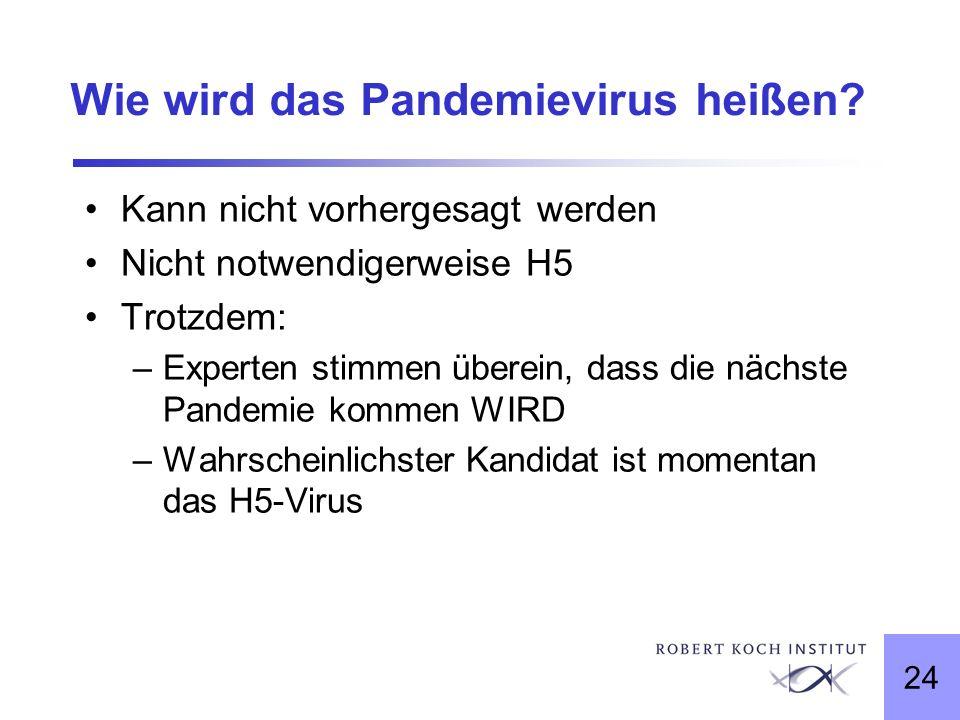 24 Wie wird das Pandemievirus heißen? Kann nicht vorhergesagt werden Nicht notwendigerweise H5 Trotzdem: –Experten stimmen überein, dass die nächste P