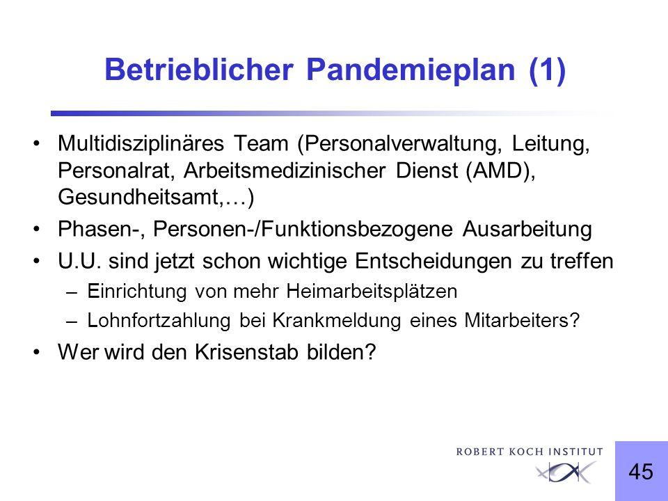 45 Betrieblicher Pandemieplan (1) Multidisziplinäres Team (Personalverwaltung, Leitung, Personalrat, Arbeitsmedizinischer Dienst (AMD), Gesundheitsamt