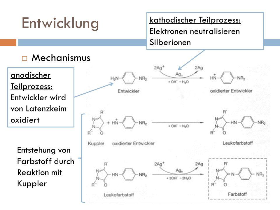 Entwicklung Mechanismus anodischer Teilprozess: Entwickler wird von Latenzkeim oxidiert kathodischer Teilprozess: Elektronen neutralisieren Silberionen Entstehung von Farbstoff durch Reaktion mit Kuppler