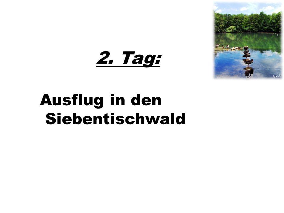 2. Tag: Ausflug in den Siebentischwald