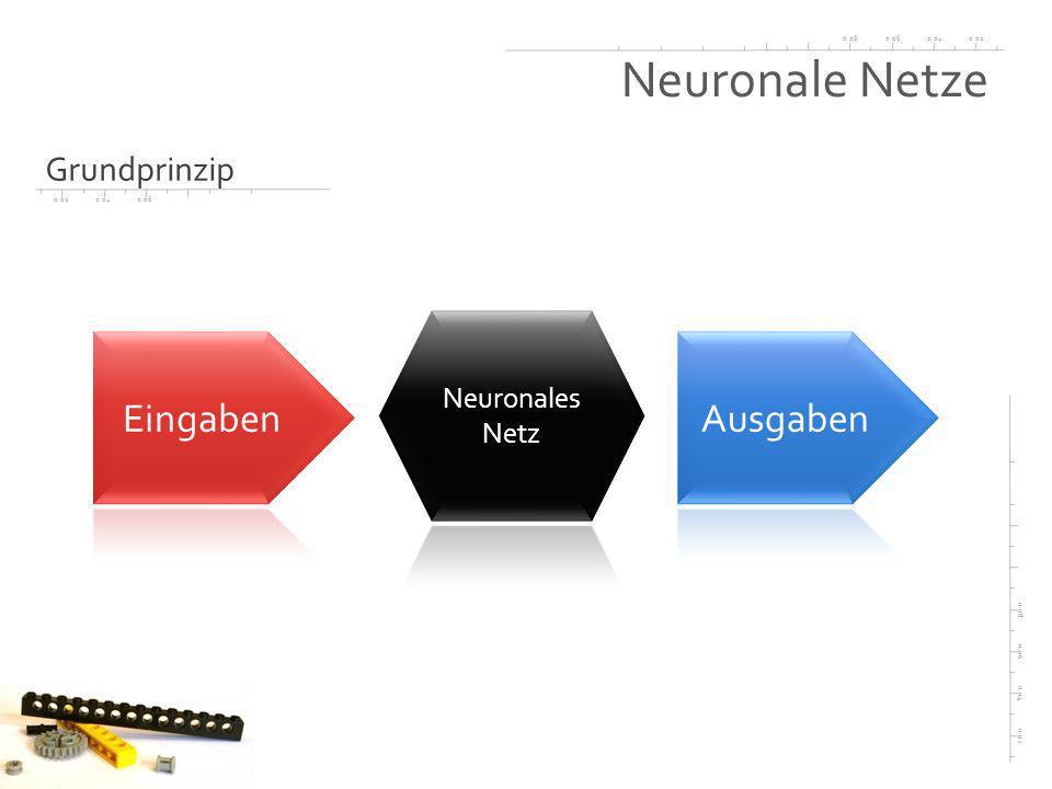0.020.040.060.08 0.02 0.04 0.06 0.08 0.020.040.06 Neuronale Netze Grundprinzip