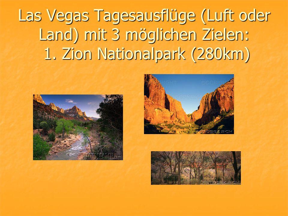 Las Vegas Tagesausflüge (Luft oder Land) mit 3 möglichen Zielen: 1. Zion Nationalpark (280km)