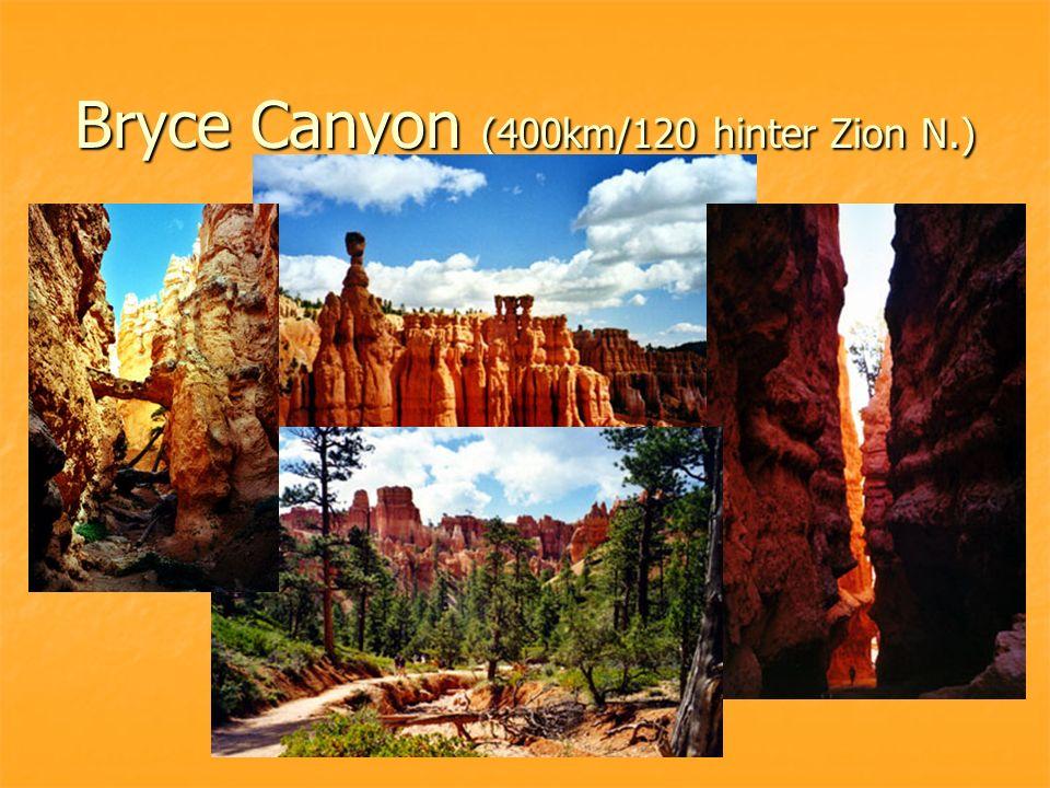 Bryce Canyon (400km/120 hinter Zion N.)