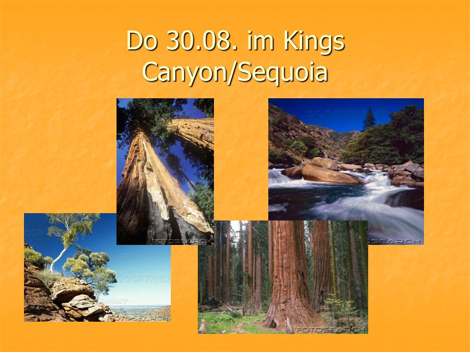 Do 30.08. im Kings Canyon/Sequoia