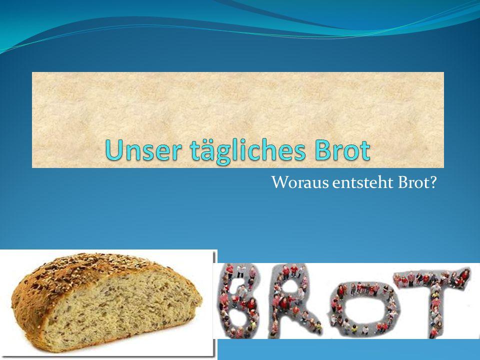 Woraus entsteht Brot?