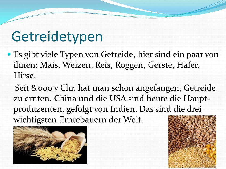 Getreidetypen Es gibt viele Typen von Getreide, hier sind ein paar von ihnen: Mais, Weizen, Reis, Roggen, Gerste, Hafer, Hirse. Seit 8.ooo v Chr. hat