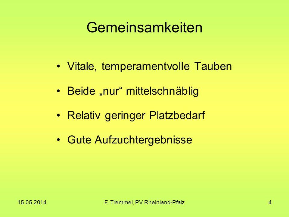 15.05.2014F. Tremmel, PV Rheinland-Pfalz15 Figurita-Mövchen