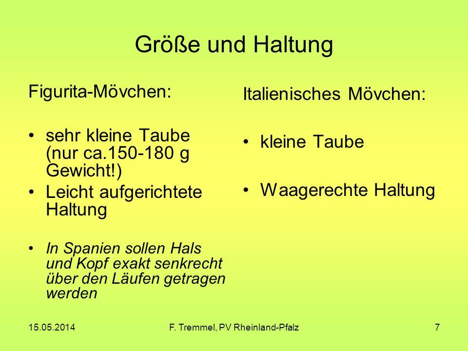 15.05.2014F. Tremmel, PV Rheinland-Pfalz28 Italienische Mövchen