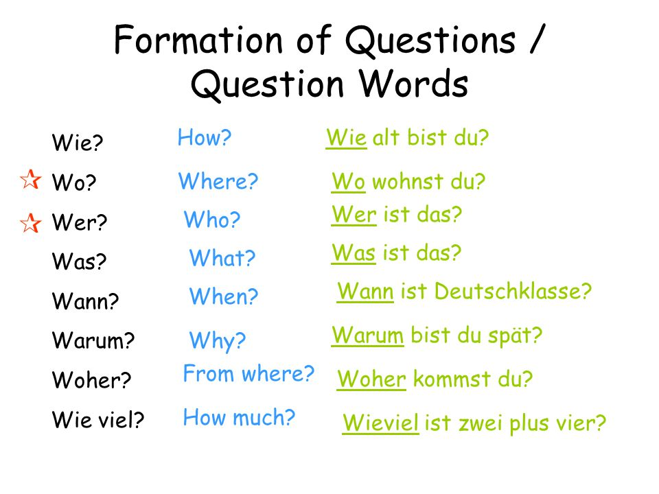 Formation of Questions / Question Words What do you notice about the word order with question words.