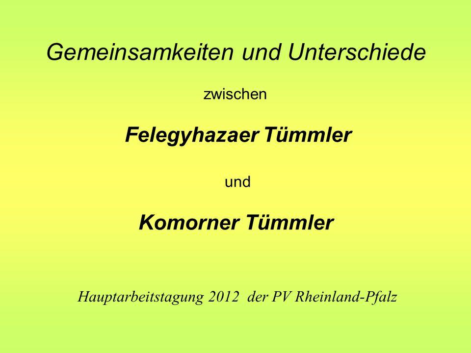 Gemeinsamkeiten und Unterschiede zwischen Felegyhazaer Tümmler und Komorner Tümmler Hauptarbeitstagung 2012 der PV Rheinland-Pfalz