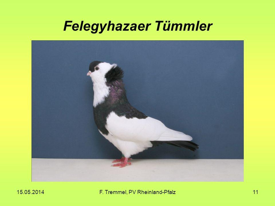 15.05.2014F. Tremmel, PV Rheinland-Pfalz11 Felegyhazaer Tümmler