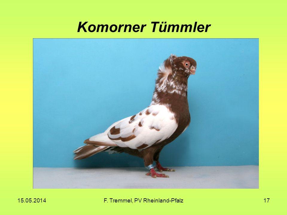 15.05.2014F. Tremmel, PV Rheinland-Pfalz17 Komorner Tümmler