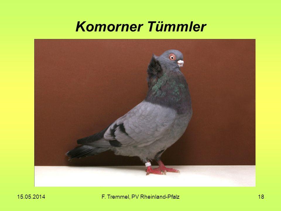 15.05.2014F. Tremmel, PV Rheinland-Pfalz18 Komorner Tümmler