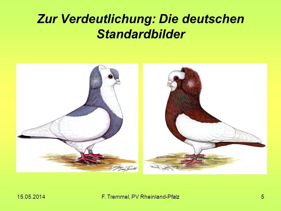 15.05.2014F. Tremmel, PV Rheinland-Pfalz5 Zur Verdeutlichung: Die deutschen Standardbilder