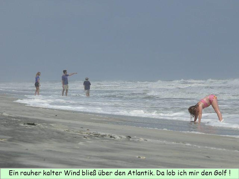 Ein rauher kalter Wind bließ über den Atlantik. Da lob ich mir den Golf !