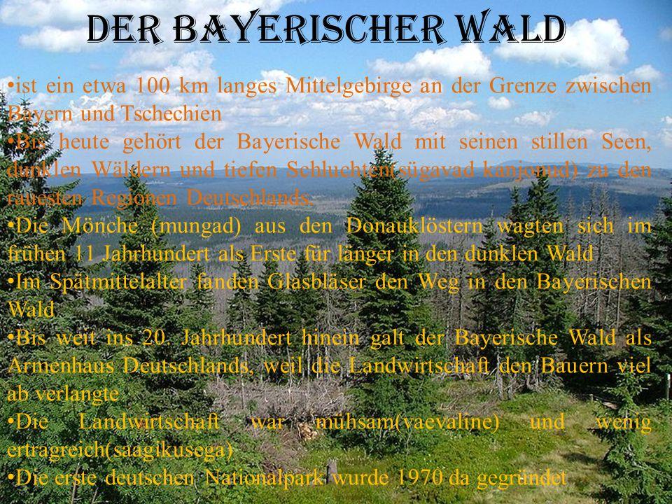 Der Bayerischer wald ist ein etwa 100 km langes Mittelgebirge an der Grenze zwischen Bayern und Tschechien Bis heute gehört der Bayerische Wald mit seinen stillen Seen, dunklen Wäldern und tiefen Schluchten(sügavad kanjonud) zu den rauesten Regionen Deutschlands.