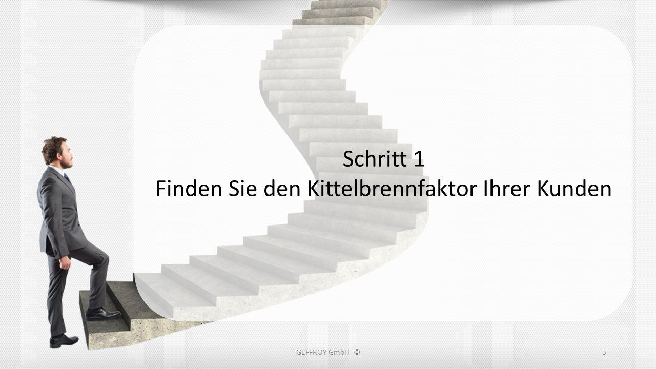 Folgende vier Punkte muss Ihre neue Seite enthalten: Das brennende Problem Ein Video mit Lösungsvorschlag Kostenloses Give-Away Kontaktdaten GEFFROY GmbH ©24