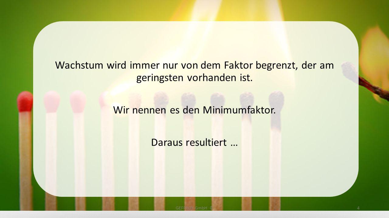 GEFFROY GmbH ©25 Rubrica1 Rubrica2 Rubrica3 Rubrica4 Rubrica5 Rubrica6 Rubrica7 Rubrica8 Rubrica9 90 % aller Unternehmen sind im Internet nicht erfolgreich.