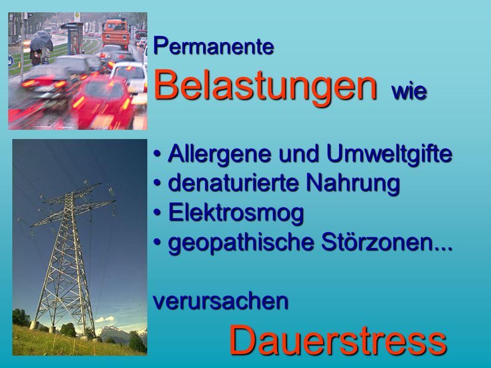 P ermanente Belastungen wie Allergene und Umweltgifte denaturierte Nahrung Elektrosmog geopathische Störzonen...