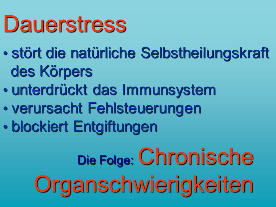 stärkt Ihre Belastbarkeit Stressresistenz Leistungsfähigkeit Selbstheilungskräfte auch für Kinder geeignet !