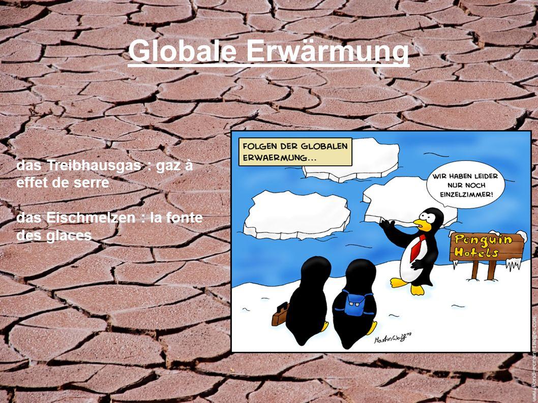 Globale Erwärmung das Treibhausgas : gaz à effet de serre das Eischmelzen : la fonte des glaces