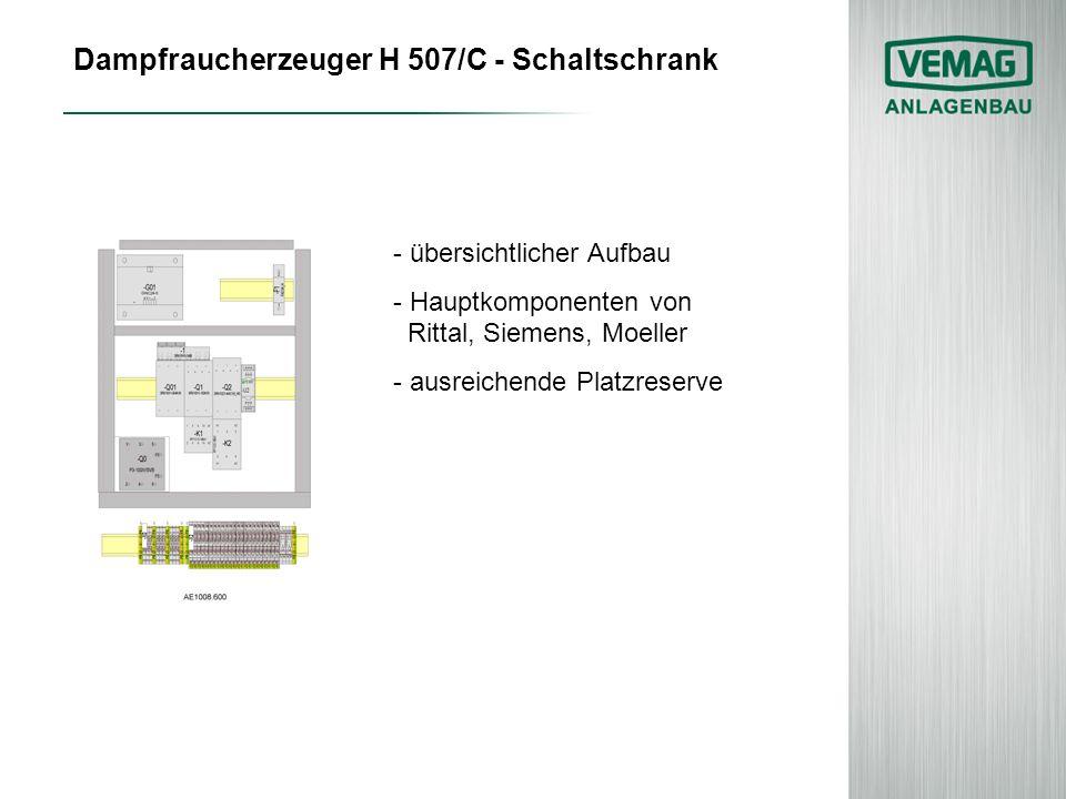 Dampfraucherzeuger H 507/C - Schaltschrank - übersichtlicher Aufbau - Hauptkomponenten von Rittal, Siemens, Moeller - ausreichende Platzreserve