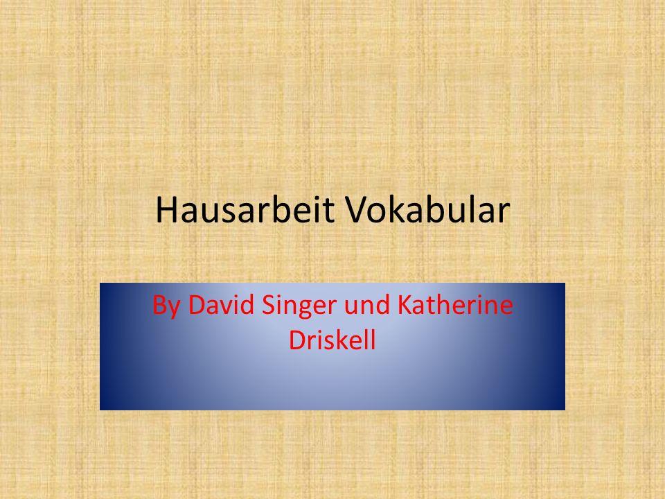 Hausarbeit Vokabular By David Singer und Katherine Driskell