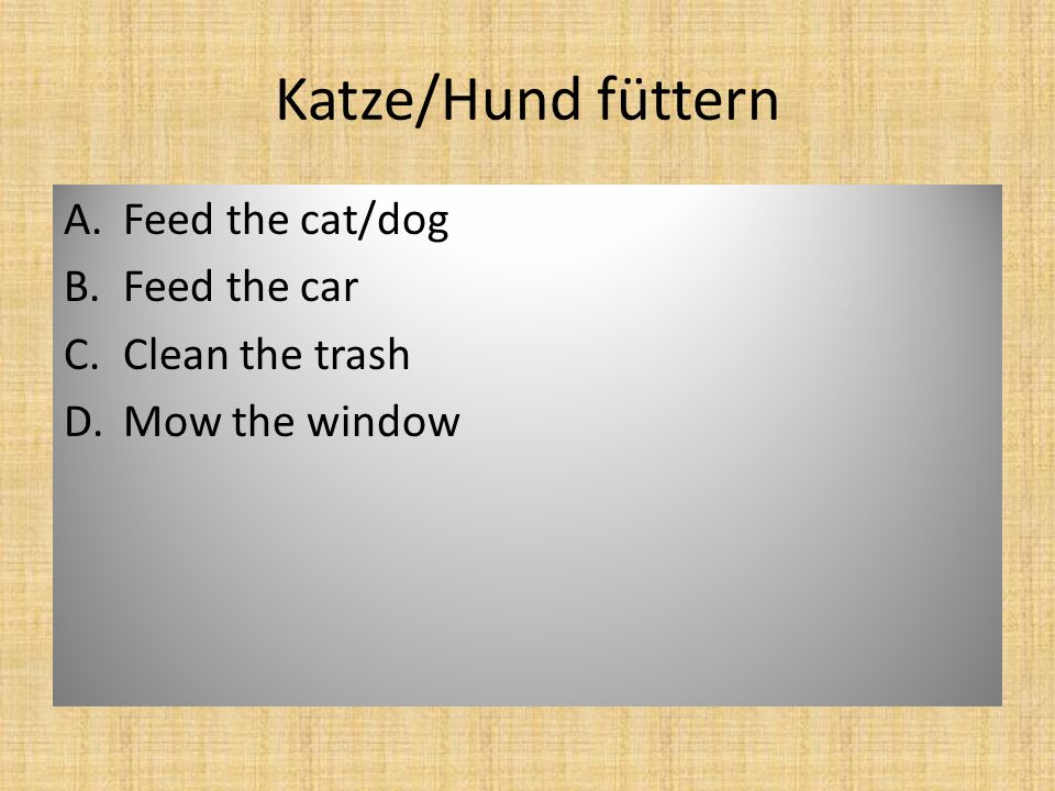 Katze/Hund füttern A.Feed the cat/dog B.Feed the car C.Clean the trash D.Mow the window