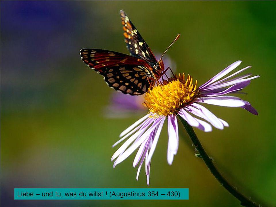 Liebe – und tu, was du willst ! (Augustinus 354 – 430)