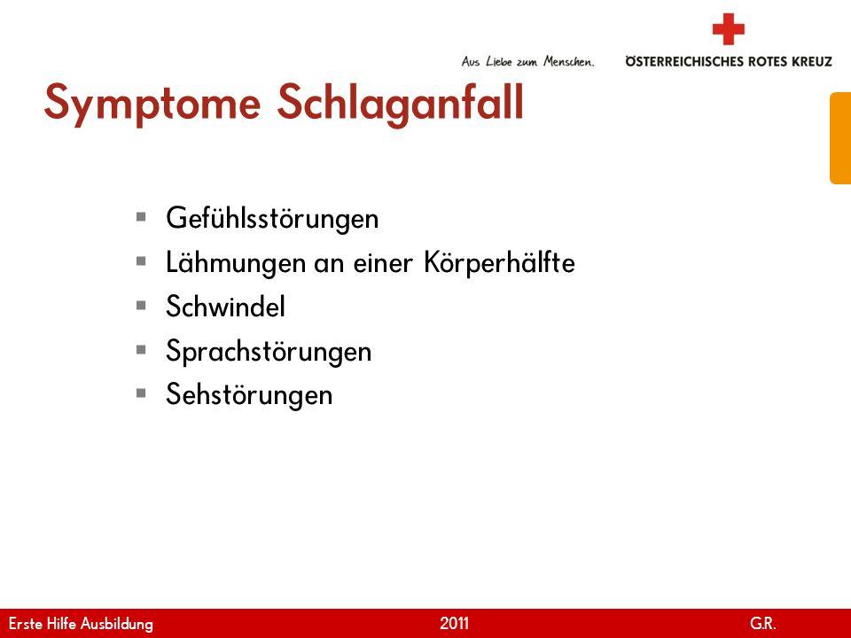 www.roteskreuz.at Version April | 2011 Symptome Schlaganfall Gefühlsstörungen Lähmungen an einer Körperhälfte Schwindel Sprachstörungen Sehstörungen 2