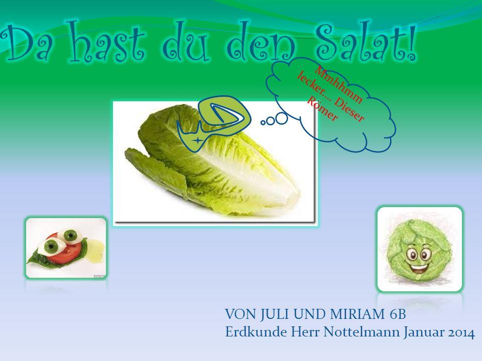 Inhaltsverzeichnis: 1.Salat im Winter- was tun.