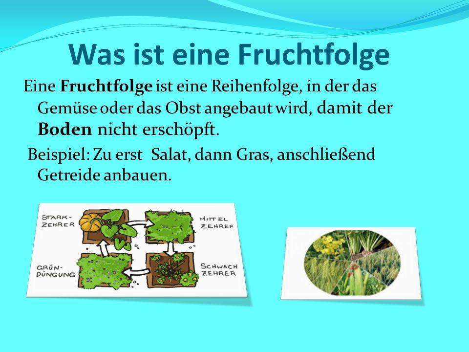 Was ist eine Fruchtfolge Eine Fruchtfolge ist eine Reihenfolge, in der das Gemüse oder das Obst angebaut wird, damit der Boden nicht erschöpft. Beispi