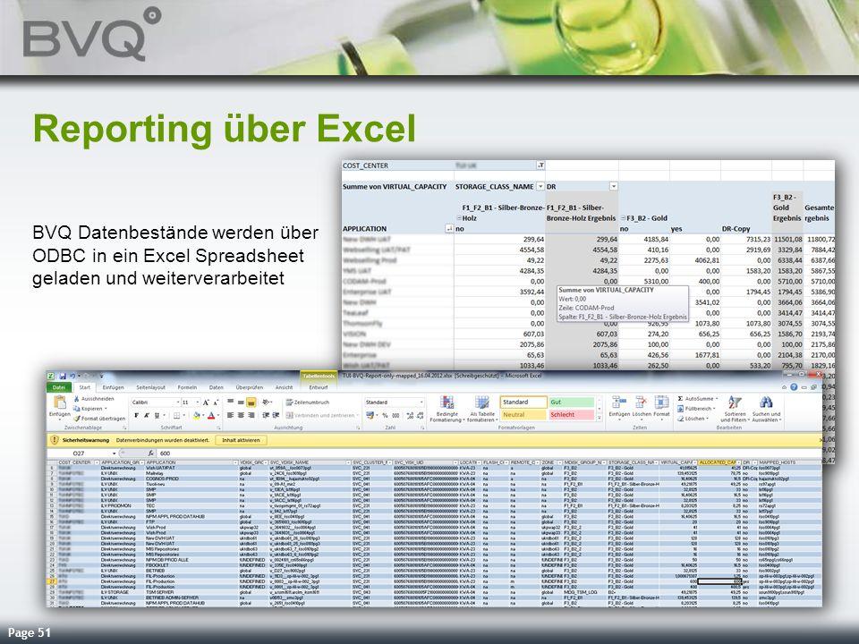 Page 51 Reporting über Excel BVQ Datenbestände werden über ODBC in ein Excel Spreadsheet geladen und weiterverarbeitet