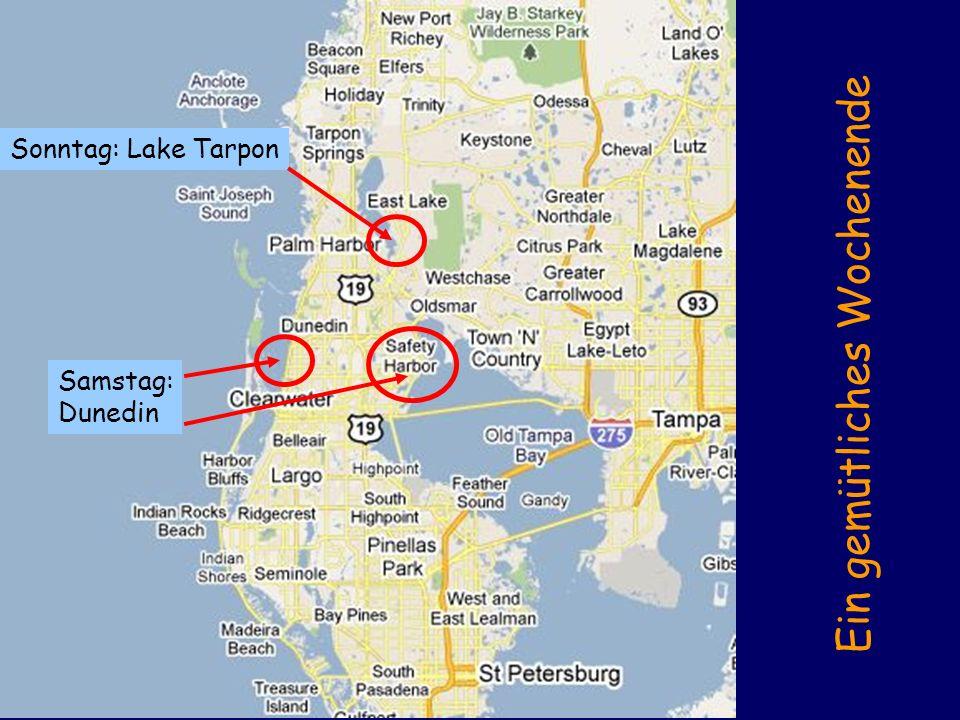 Sonntag: Lake Tarpon Samstag: Dunedin Ein gemütliches Wochenende
