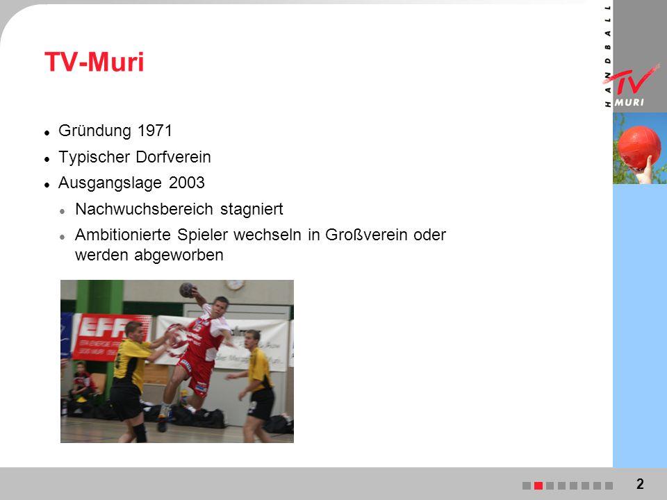 TV-Muri Gründung 1971 Typischer Dorfverein Ausgangslage 2003 Nachwuchsbereich stagniert Ambitionierte Spieler wechseln in Großverein oder werden abgeworben 2