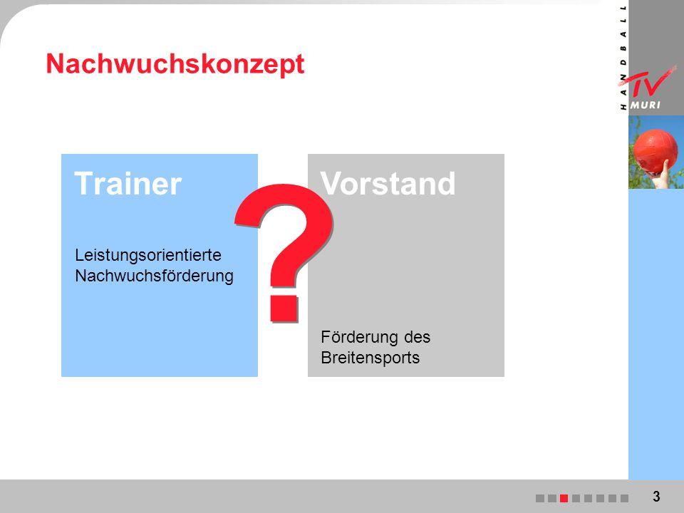Nachwuchskonzept Leistungsorientierte Nachwuchsförderung Trainer Förderung des Breitensports Vorstand 3 .