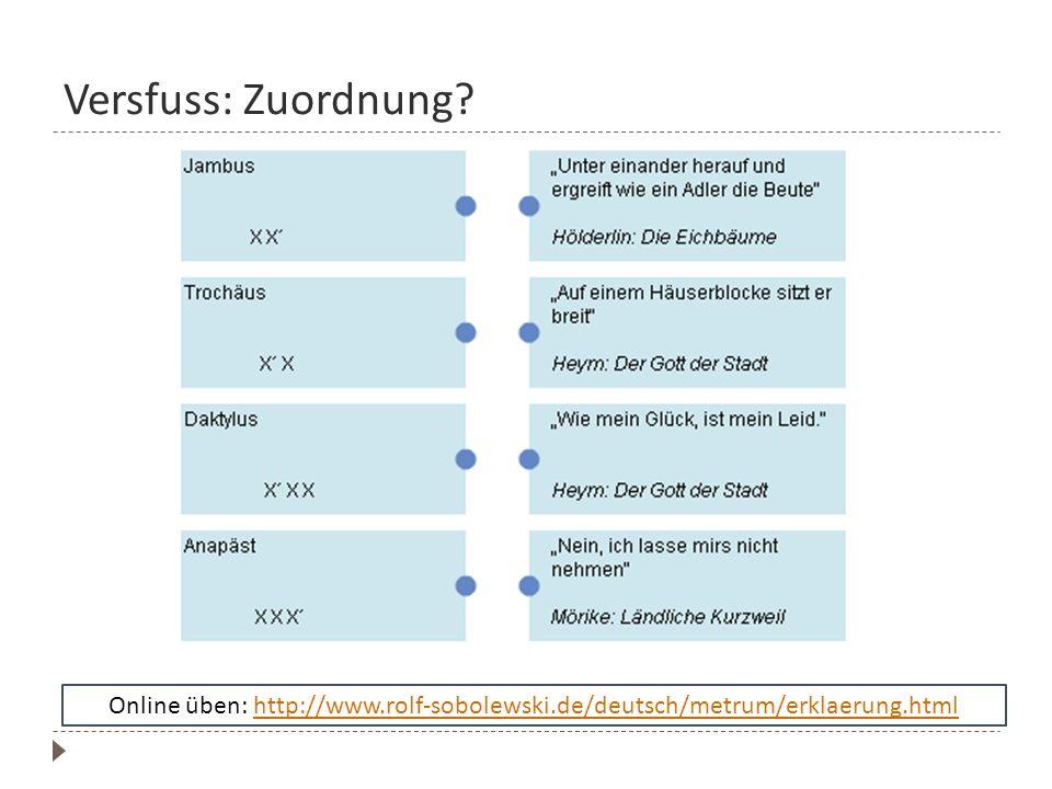 Versfuss: Zuordnung? Online üben: http://www.rolf-sobolewski.de/deutsch/metrum/erklaerung.htmlhttp://www.rolf-sobolewski.de/deutsch/metrum/erklaerung.