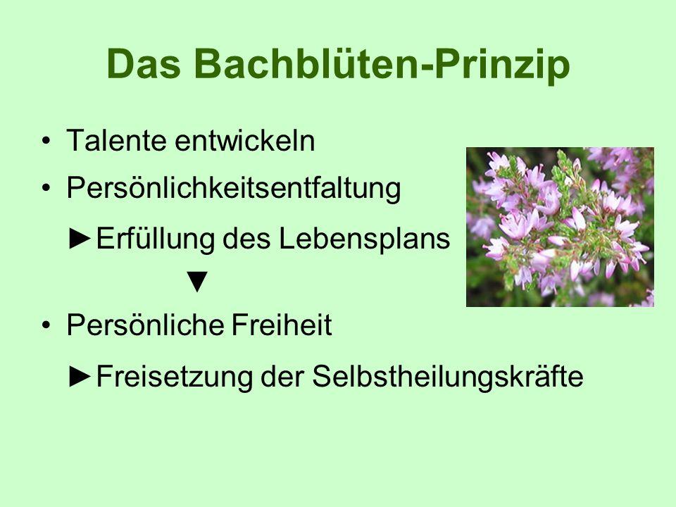 Das Bachblüten-Prinzip Talente entwickeln Persönlichkeitsentfaltung Erfüllung des Lebensplans Persönliche Freiheit Freisetzung der Selbstheilungskräft