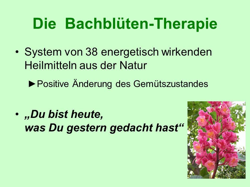 Die Bachblüten-Therapie System von 38 energetisch wirkenden Heilmitteln aus der Natur Positive Änderung des Gemütszustandes Du bist heute, was Du gest