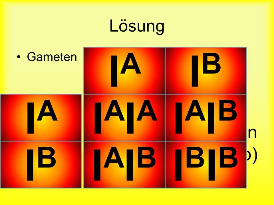 Lösung Gameten Befruchtete Eizellen (Genotyp) IAIA IBIB IBIB IAIA IAIAIAIA IAIBIAIB IAIBIAIB IBIBIBIB