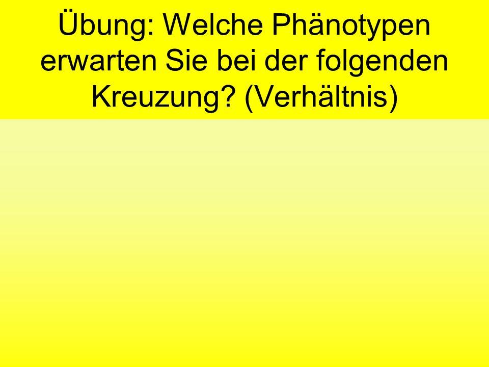 Lösung Phänotyp 1:2:1 IAIA IBIB IBIB IAIA AAAB BB Phänotyp A Phänotyp AB Phänotyp B